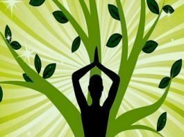 Meditația Shenu
