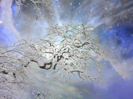 12 Nopți Sfinte - Rudolf Steiner