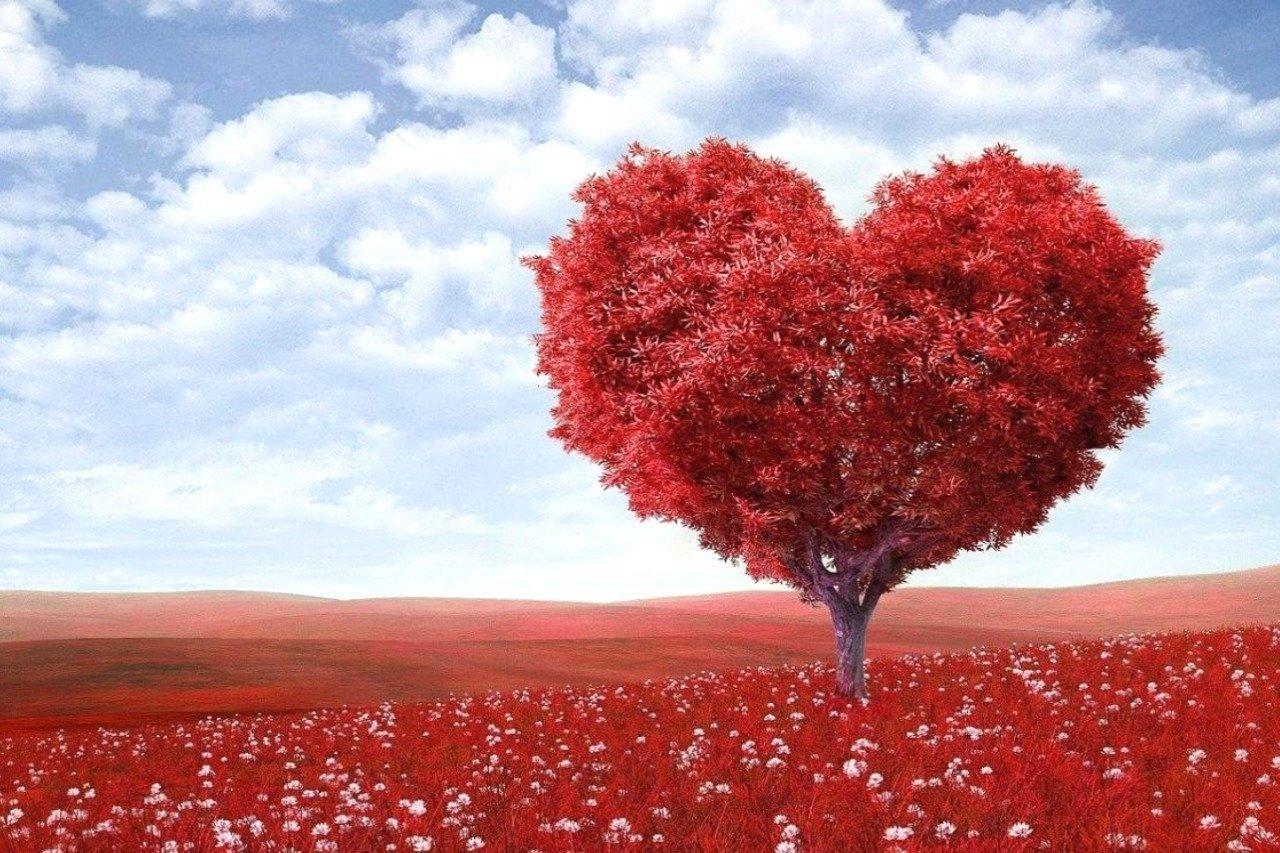 atelierul trezirea inimii iluminate